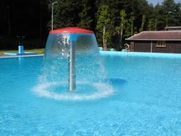 Vodní hřib